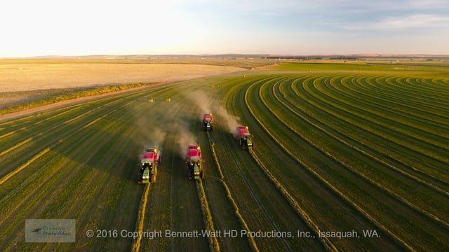 sunset-baling-hay